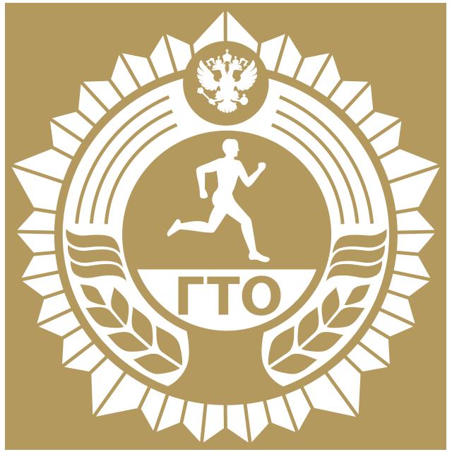 Региональный центр тестирования Всероссийского физкультурно-спортивного комплекса
